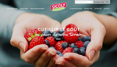 Sicoly Webdesign Maelle Guillot Design